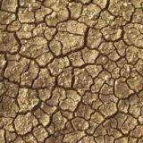 Alerte sécheresse pour le département de Meurthe et Moselle