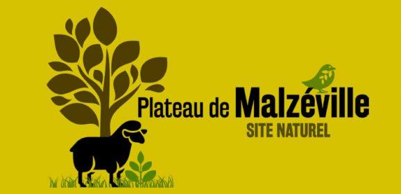 Le Plateau de Malzéville s'anime !