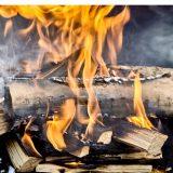 Réglementation de l'apport de feu en forêt et le brûlage des déchets verts